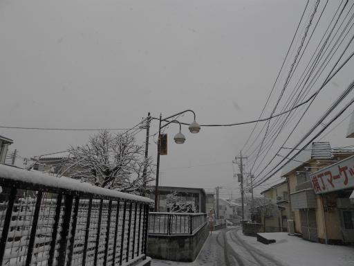20120229・雪だ10