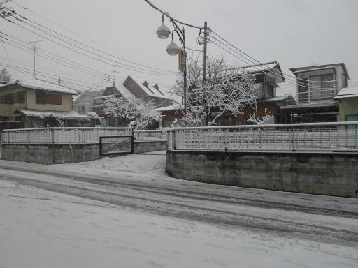 20120229・雪だ08