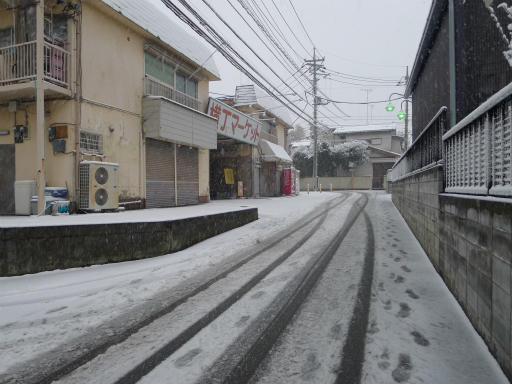 20120229・雪だ07