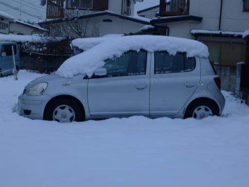 20120229・雪だ17