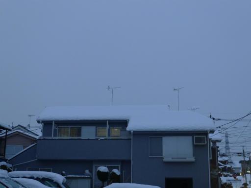 20120229・雪だ18