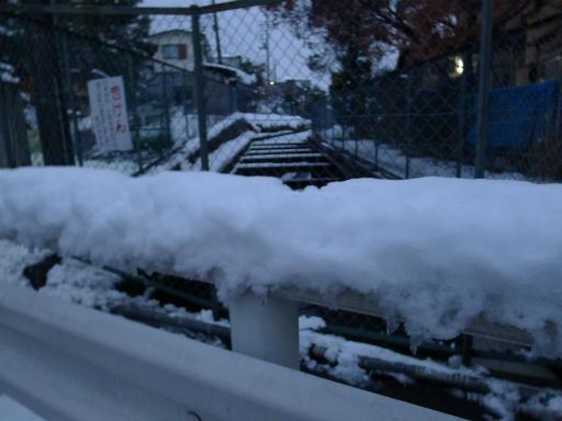 20120229・雪だ16