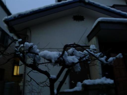 20120229・雪だ22