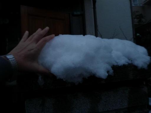 20120229・雪だ23