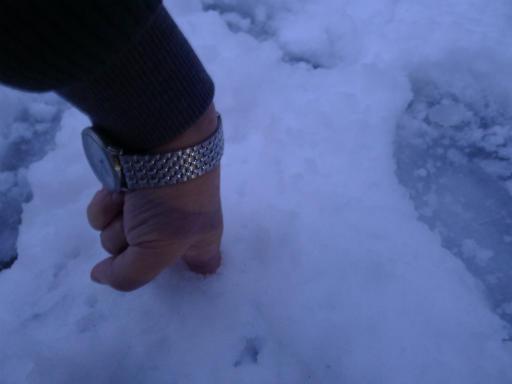 20120229・雪だ20