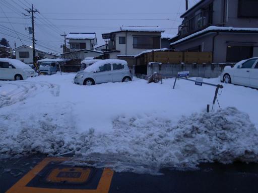 20120229・雪だ19