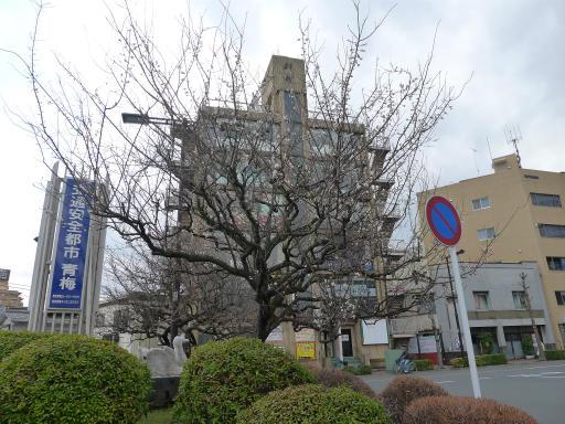 20120311・東青梅24