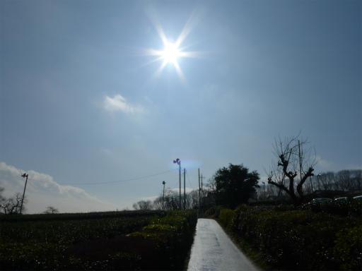 20120324・昼の陽射し空07