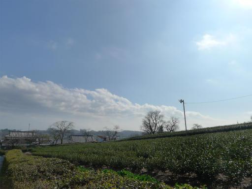 20120324・昼の陽射し空08