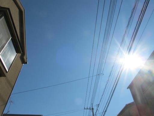 20120326・東京散歩1-05