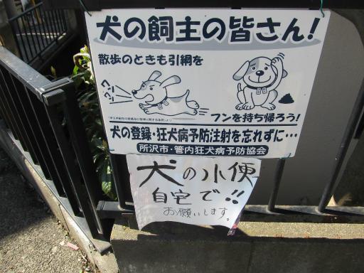 20120326・東京散歩1-03