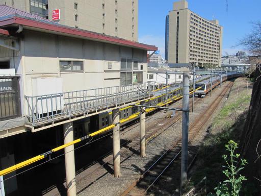 20120326・東京散歩2-16