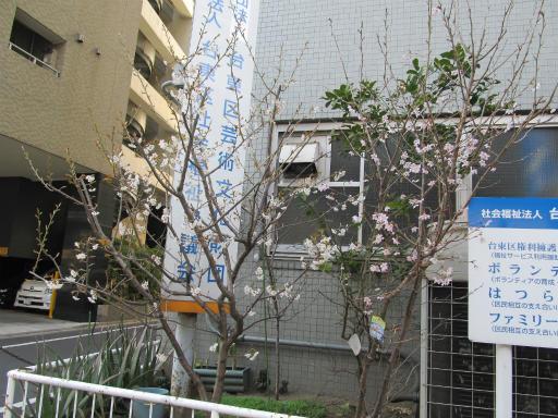 20120326・東京散歩8-02