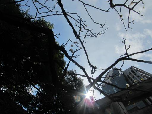 20120326・東京散歩9-24空04
