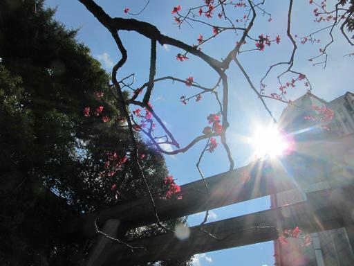 20120326・東京散歩9-23空03