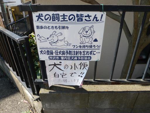 20120326・東京散歩ネオン01・L
