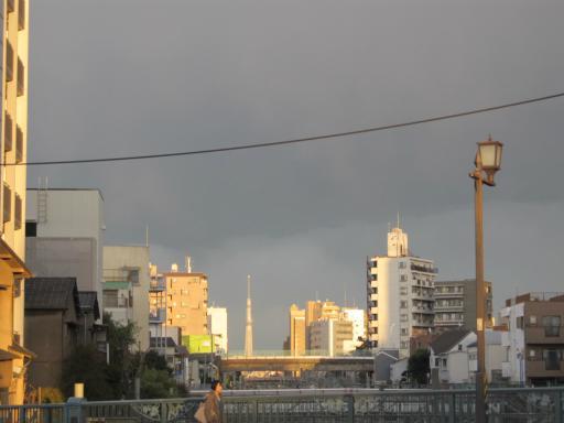 20120326・東京散歩ネオンST03・池袋