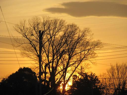 20120330・悲しいほど今日の夕陽きれいだね8