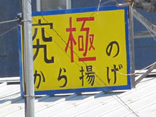 20120408・多磨霊園04