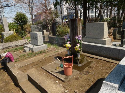 20120408・多磨霊園L01