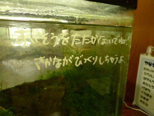 20120410・近所の桜1-21