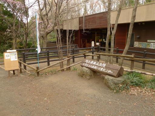 20120410・近所の桜1-19