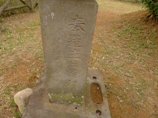 20120410・近所の桜2-16