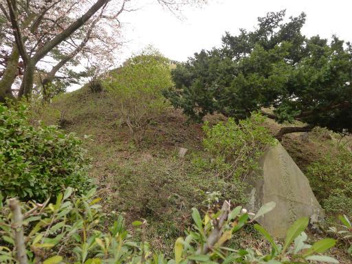 20120410・近所の桜2-13