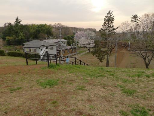 20120410・近所の桜2-22