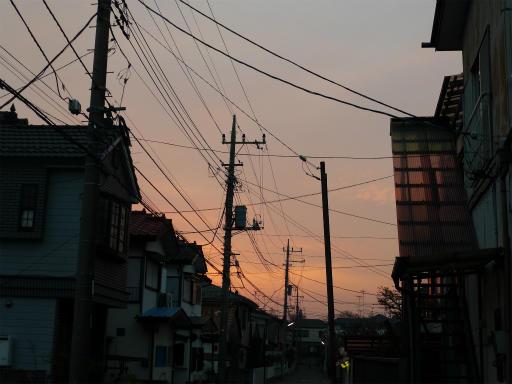 20120410・近所の桜3-23