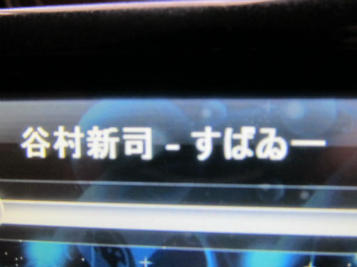 20120501・巣倍4