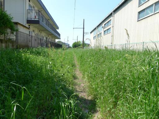 20120505・安比奈線散歩2-12