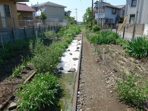 20120505・安比奈線散歩2-24