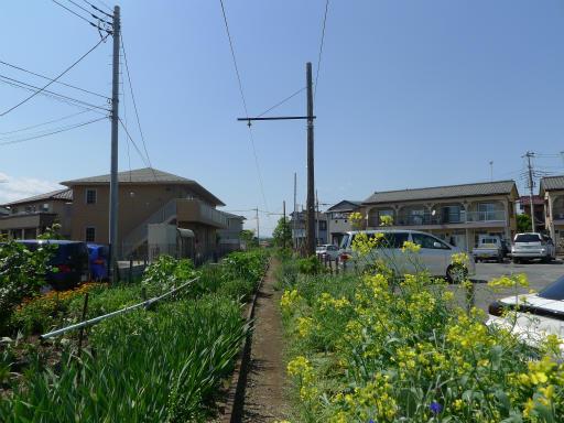 20120505・安比奈線散歩2-23