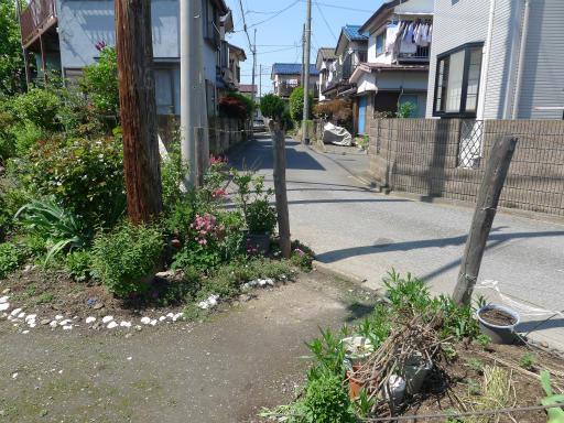 20120505・安比奈線散歩2-25