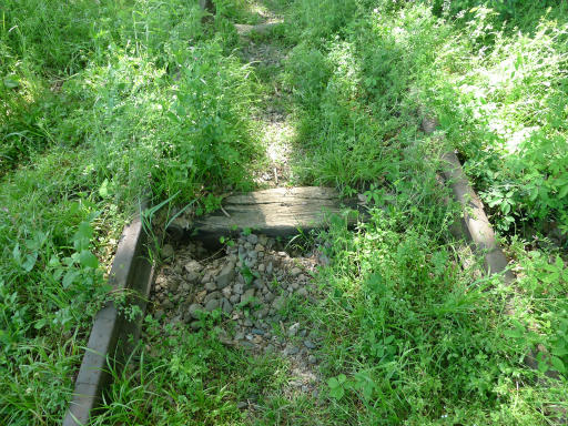 20120505・安比奈線散歩4-09