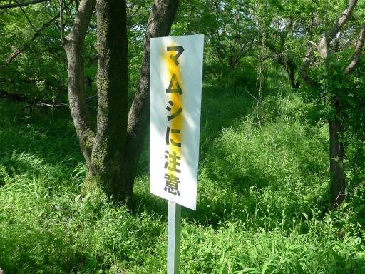 20120505・安比奈線散歩4-07