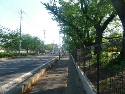 20120505・安比奈線散歩5-19