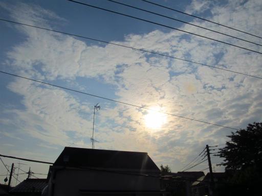 20120521・金環日蝕おまけの1・6:19