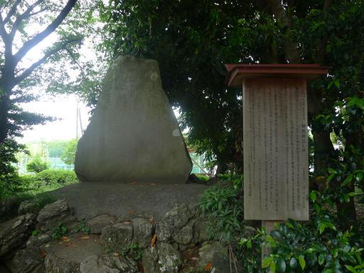 20120526・中氷川散歩12