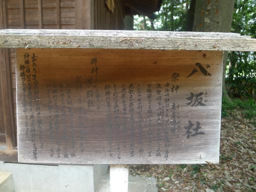 20120526・中氷川散歩17大