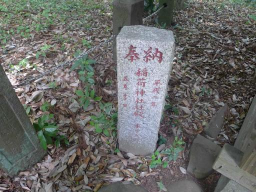 20120526・中氷川散歩19