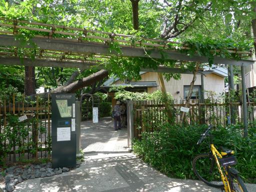 20120607・牧野2-03