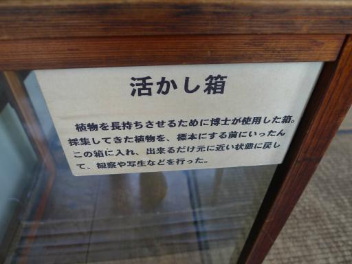 20120607・牧野2-23中