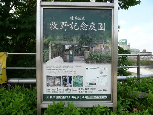 20120609・大泉ネオン6
