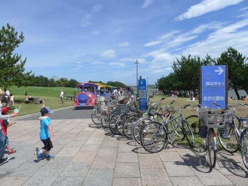 20120716・葛西海浜公園3-11