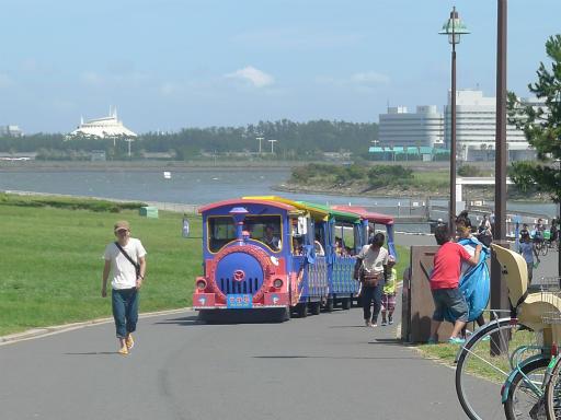 20120716・葛西海浜公園3-10