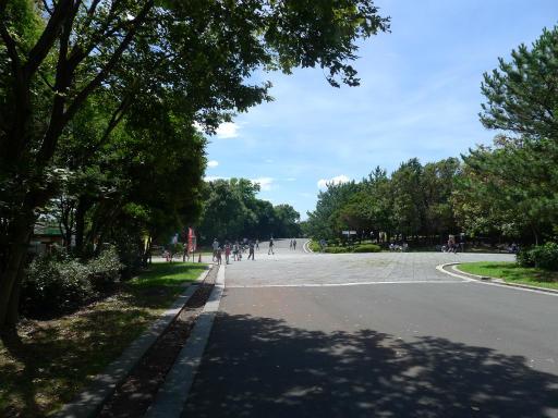 20120716・葛西海浜公園3-07