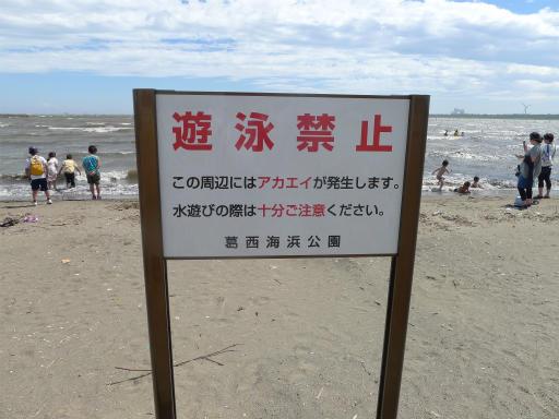 20120716・葛西海浜公園3-14
