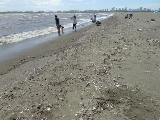 20120716・葛西海浜公園3-21